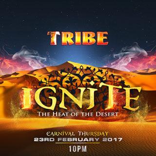 ignite (1)